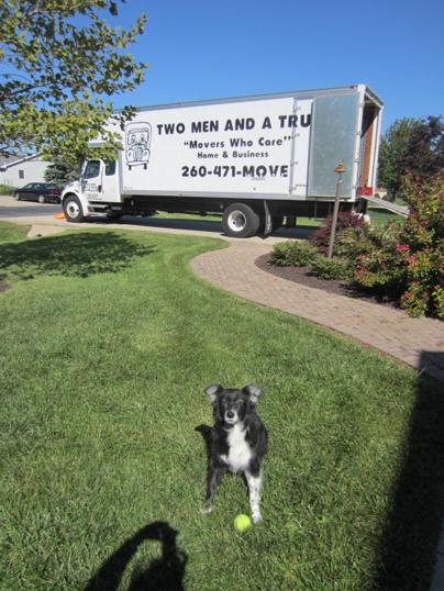 roxy by truck