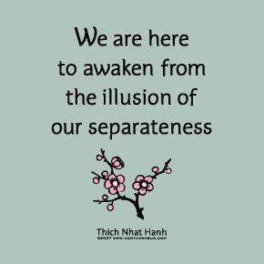 Illusion of Separateness