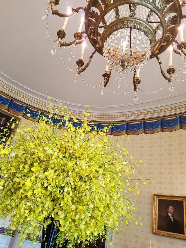 White House (10)